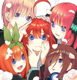 中野家五胞胎姊妹 資訊框.png