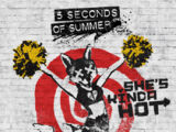 She's Kinda Hot (song)