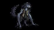 Loboan Female