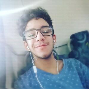 Pedro Henrique Menezes Da Silva's avatar