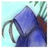 Kalsonic12's avatar