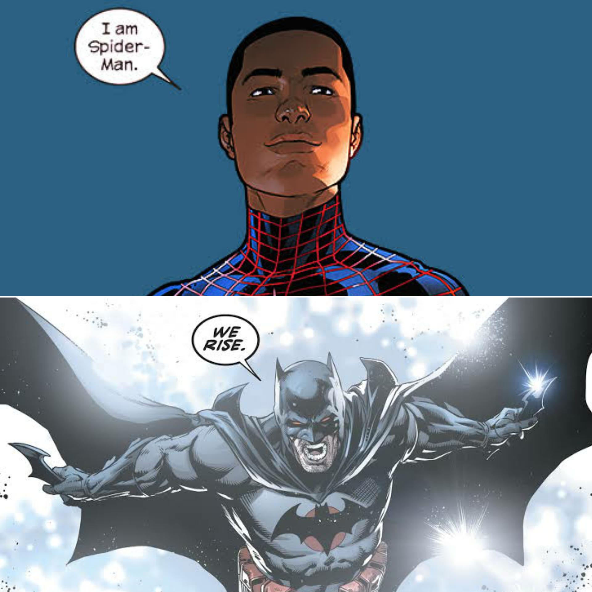 Bats vs Spiders #1