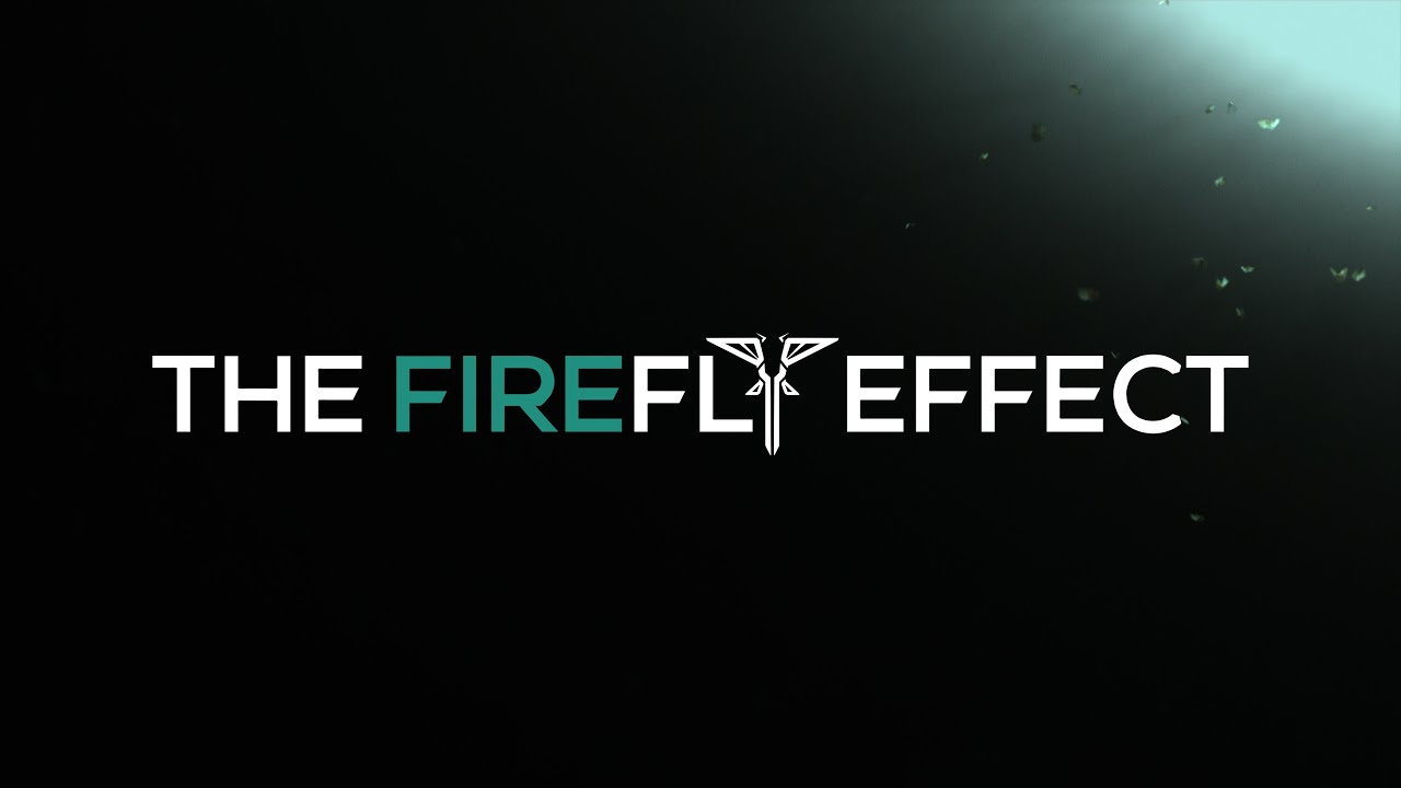 The Firefly Effect | Through the Valley Trailerized Cover