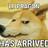 GlascrowFreak's avatar