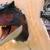 Carnotaurus boi
