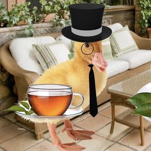 CroissantKing's avatar