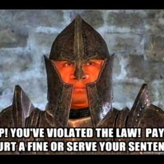 Oblivion: Stop, you violated the law!