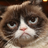 GhostSponge2's avatar