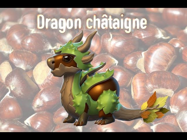 DRAGONS DE LA SEMAINE #2 DRAGON CHÂTAIGNE 🌰
