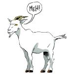 Don Felipe's avatar