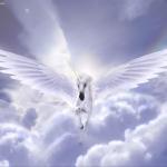 GoddessOfCarries's avatar