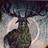 Ptaasznik's avatar