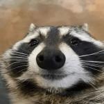TheKorraFanatic's avatar