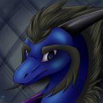 Draykat's avatar