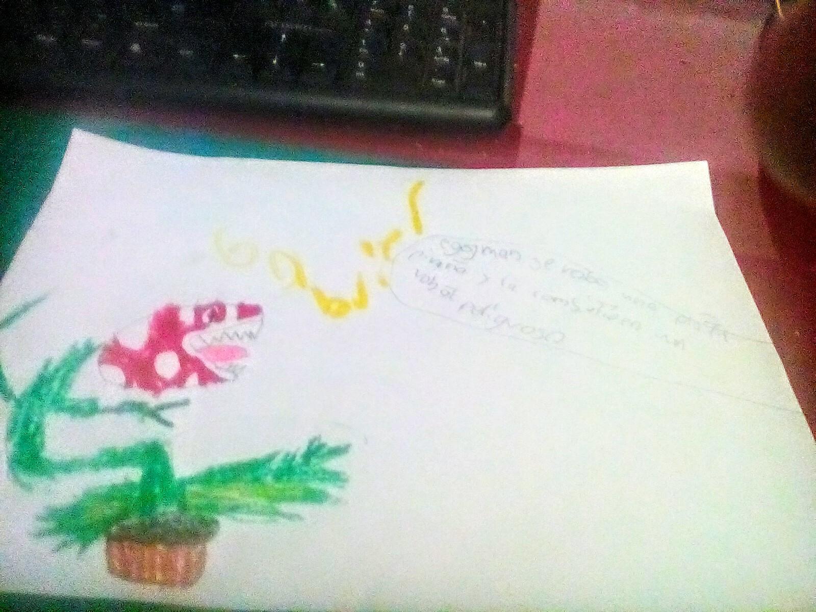 Miren mi nuevo dibujo