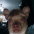 Cakeboi1's avatar