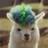 Bebedoodoo's avatar