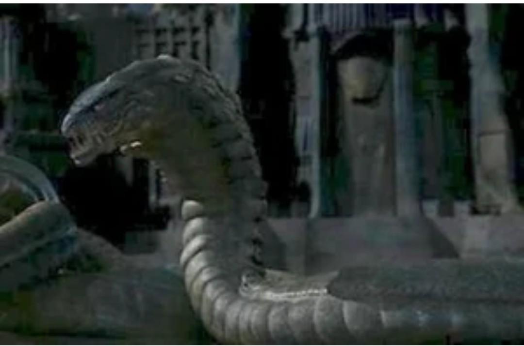 Estoy evolucionando en imoogi un semi dragon