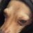 KingEgg3's avatar