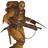 RenanK's avatar