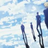 Brando'sFlaws's avatar