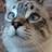 Mcnealex1's avatar