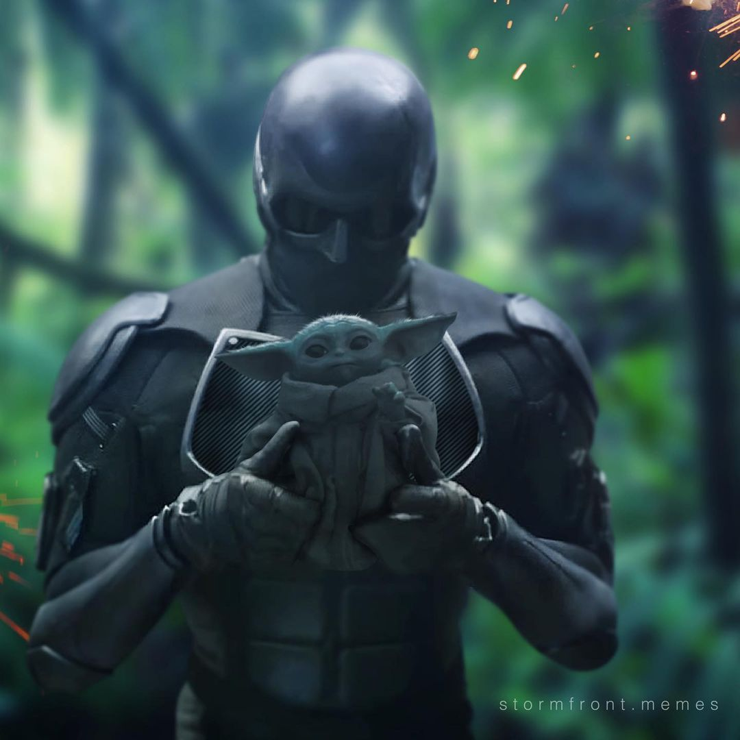 "Stormfront's Instagram profile post: ""💥 What am I supposed to do with this?   #blacknoir #theboystv #grogu #themandalorian #theboystvshow #theboys #amazonprimevideo #babyyoda…"""