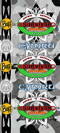 Cymru Buff.png