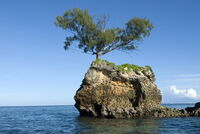 Exile Island.jpg