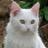Ivystar1915's avatar