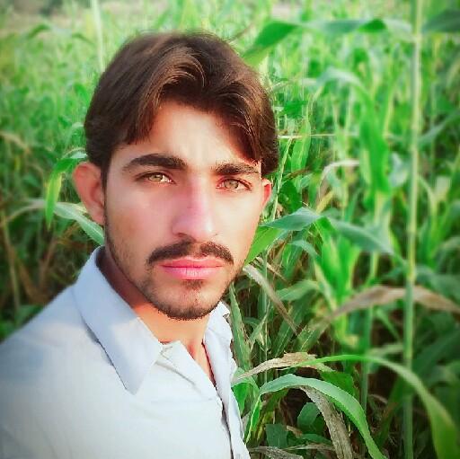 M hanif Chandio's avatar