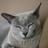 Evilsooty4's avatar