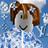 ICouldntThinkOfaUser's avatar