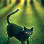 Relámpago's avatar