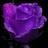 Ari7001's avatar