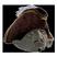 KapitänKadaver's avatar