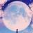 Weeby1moon's avatar