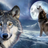 Wolfschuller69's avatar