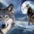 Wolfschuller69