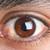 The otaku with the chestnut eyes