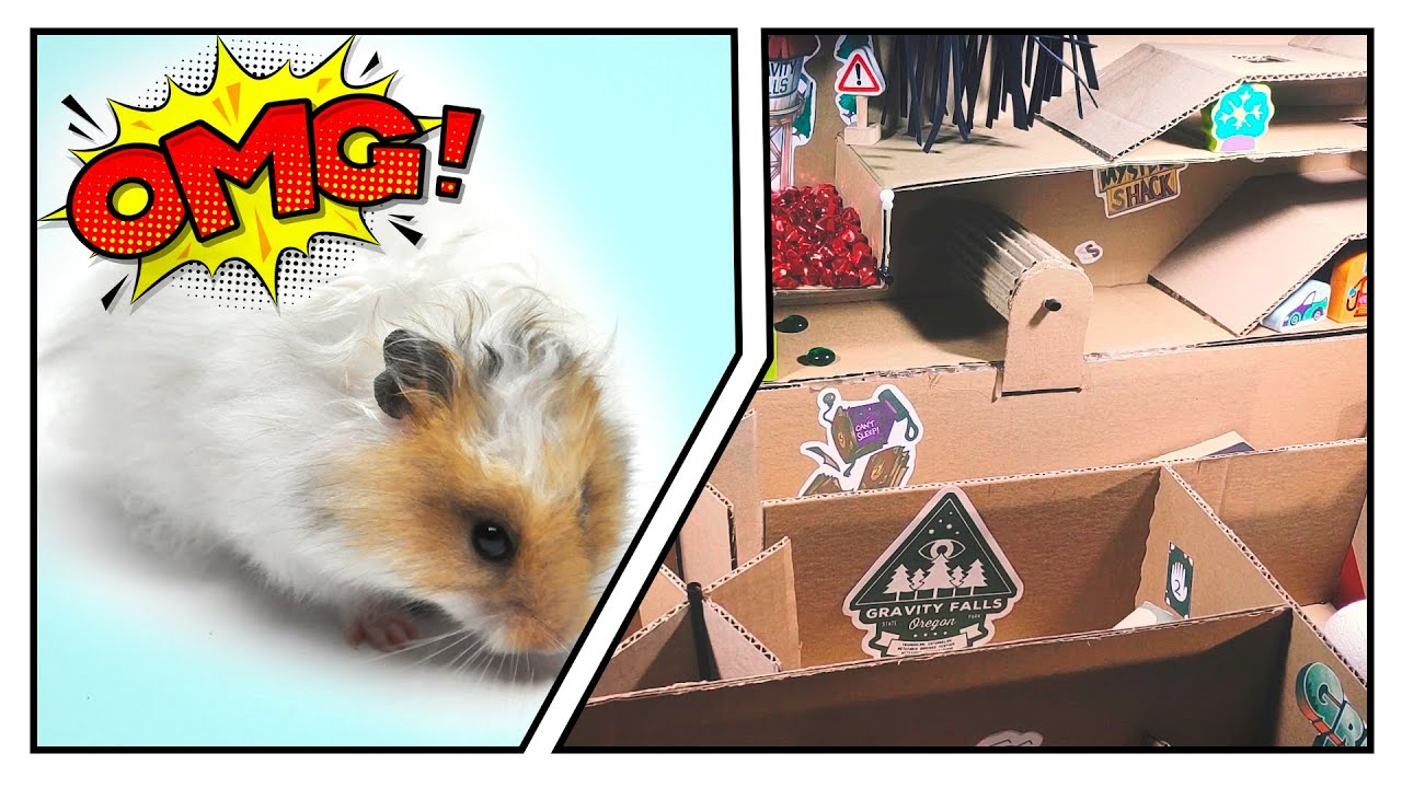 🐹 Mystery maze for Hamster - Gravity falls Maze 😱[OBSTACLE COURSE]😱 + final prize