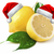 Lemonshrike