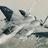 F15E StrikeEagle's avatar