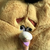 AngryBirdy9001