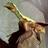 Archaeopteryx7's avatar