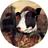 Cowcowmoo's avatar