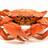 Zacrabo's avatar
