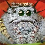 Thesunstar's avatar