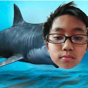 Jarisisalwaysdecent's avatar