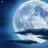 Arina10000000's avatar